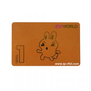 fm11rf08-card